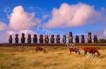 Ahu Tongariki, the largest collection of standing moai on Easter Island.